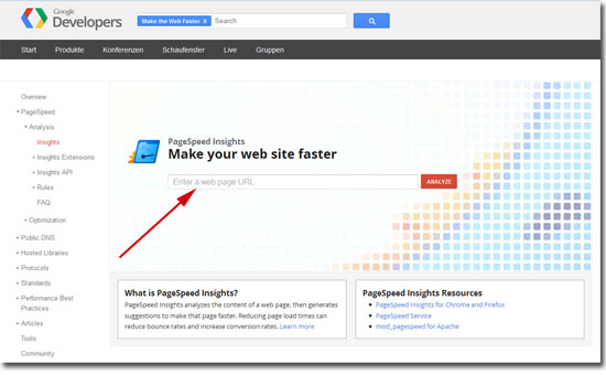 Pagespeed Analyse